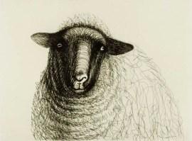 shepherding Christian